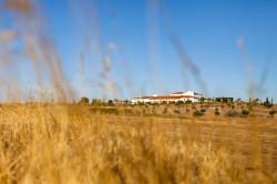 palacio-arenales-fontecruz-fotografo-caceres-iker-y-sara-nano-004