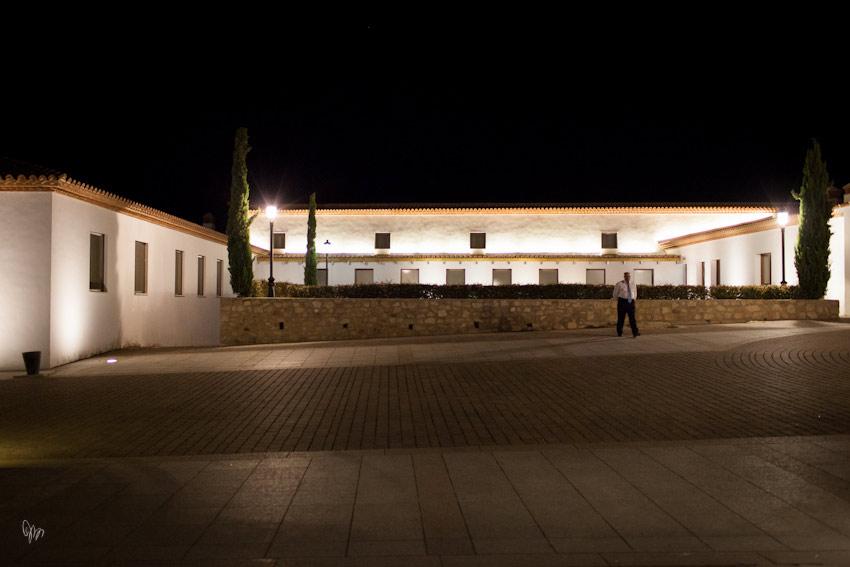 palacio-arenales-fontecruz-fotografo-caceres-iker-y-sara-nano-048