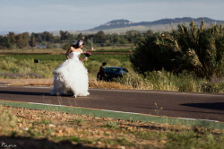 nano-gallego-sese-y-luis-fotografo-bodas-0281
