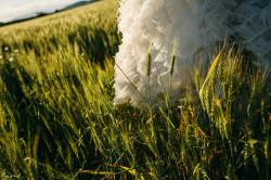 nano-gallego-sese-y-luis-fotografo-bodas-0334