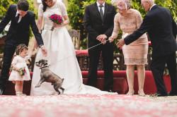 boda-castillo-arguijuelas-don-manuel-nano-gallego-021