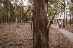 preboda-maribel-y-victor-nano-fotografo-de-bodas-0125