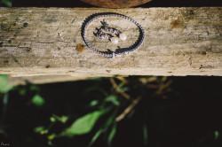 fotos-de-boda-en-jarandilla-de-la-vera-maite-y-jose-0090